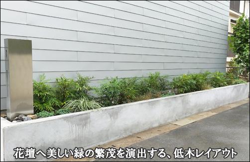 細長い花壇で美しい緑を魅せる、低木のレイアウト-流山市I様邸