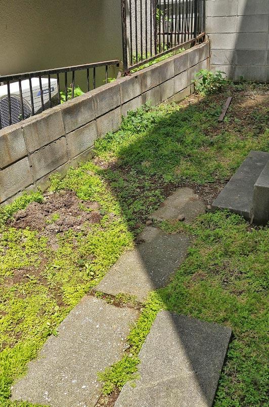 雑草対策施工前の庭