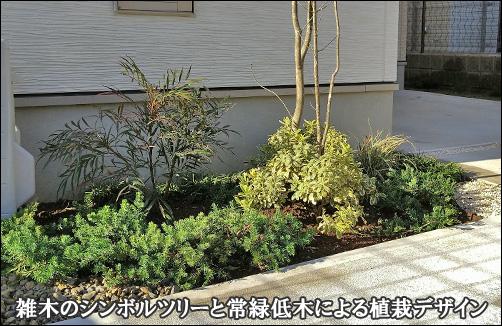 雑木シンボルツリーと常緑低木による小さな植栽デザイン-松戸市A様邸