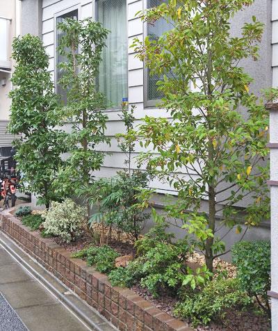 レンガ花壇に合わせる植栽デザイン