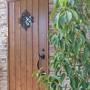 玄関や花壇におすすめな庭木は?選ぶポイントや注意点の解説、代表種類もご紹介