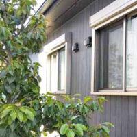 【植栽工事】日陰の窓を目隠しする、ソヨゴとオガタマの列植作業