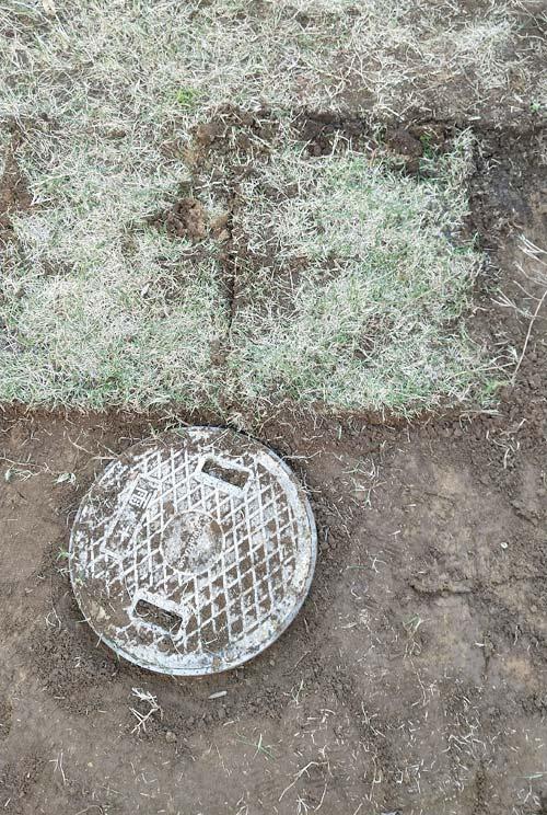 切れ目を入れて芝生を剥がす作業