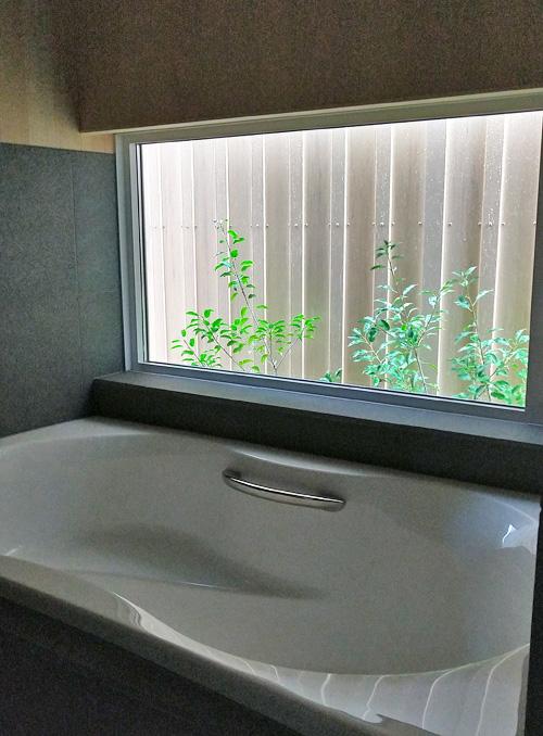 浴室へ入ると見える緑の小庭