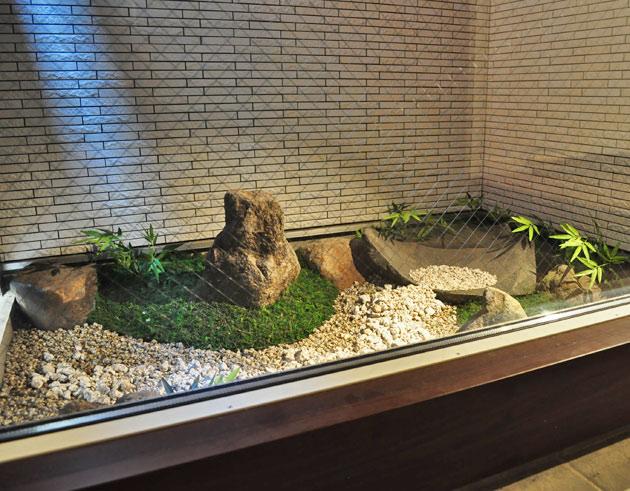 坪庭の中で本物の庭石と人工植物の融合