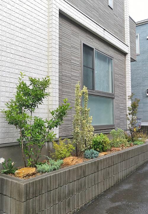 葉色も考慮して低木や石をテンポ良くレイアウト