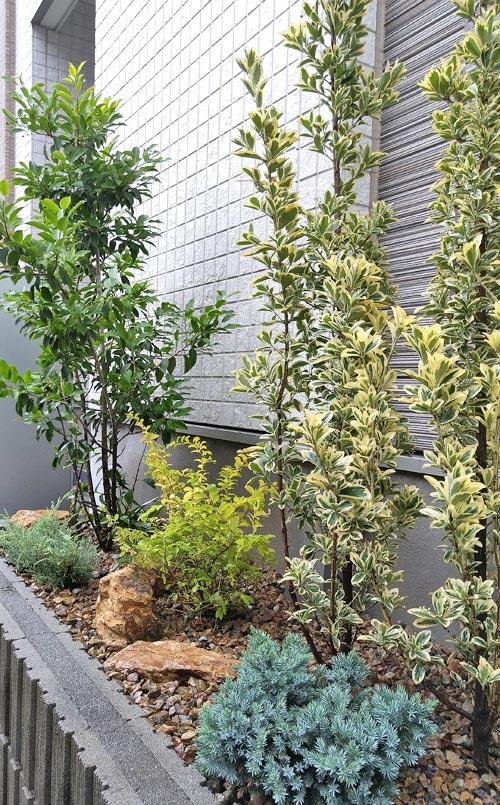 前後に色と位置を揺らす植栽