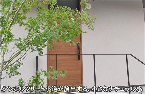 シンボルツリーのモミジとアプローチが小さなナチュラル感を-横浜市N様邸