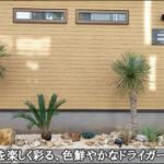オフィスを楽しく彩る、花壇に施工したドライガーデン-江戸川区東京宣広社様